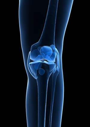 Patellar Tendonitis (Knee)