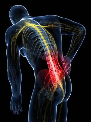 Spinal Segmental Fixation